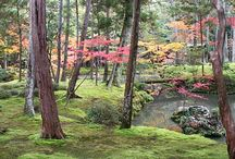 Japan / Places I want to visit when I get to Japan.