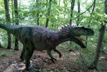 Locuri de vizitat - Dino Parc Rasnov