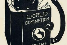 cats stuffs