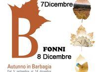 Autunno in Barbagia 2014 / Anche quest'anno in occasione dell'Autunno in Barbagia con noi alla scoperta delle Cortes Apertas