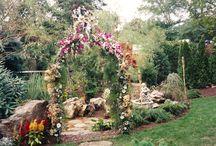 Seasonal Planting / Collection of Season Plantings