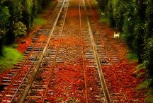 Fall in the USA !!!  All Things Fall from Scenery to Food !!