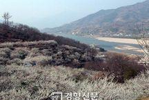 Seomjingang  / Seomjingang . Seomjingang River . Korea