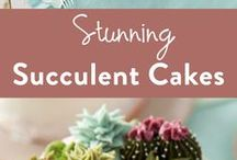 Succulents and succulent cakes