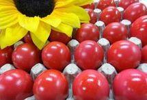 κοκκινα αυγα