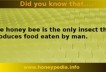Did you know that...