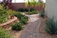 Backyard landscaping / Ideas for our backyard landscape
