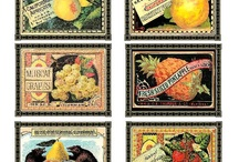 Antique Crate Labels - Fruits and Vegtables / Restored antique fruit label note cards.    Each set includes 8 assorted cards printed on high quality ecru vellum and are packed in a clear plastic box with a festive gold bow. Note cards make great gifts - one size fits all! Always appropriate, always in style, and sure to please.  / by Charting Nature