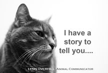 Do you want to hear my story? / Do you want to hear my story? Animals want you to listen....