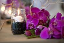 Coffee-Themed Wedding Ideas / by Your Wedding Company