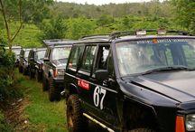 hobby / jeep, nature