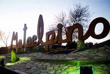 Noche en vela / #Mataelpino celebra el último fin de semana de junio la Noche en Vela. Con la colaboración de los vecinos y vecinas, asociaciones, comercios y restaurantes, durante una noche disfrutaremos por todo el pueblo de conciertos, talleres infantiles, teatro, títeres, mercadillos... convirtiéndose en una velada más mágica.