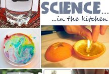 Fun Kid Experiments / by Stephanie Grant