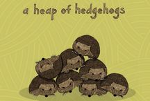 Hedgehog Art (for my hedgehog's room) / by Kerry Foster