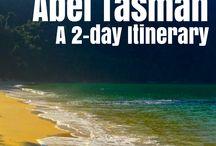 Abel Tasman Trip