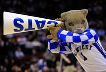 big blue nation! / i'm absolutely giddy for basketball season... / by Sarah Coleman Hunt