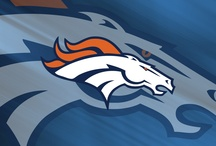 Denver Bronco Fan