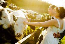 Country Farm Wedding / Who doesn't love a wedding on a farm...?