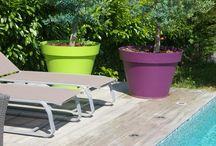 Piscine et décoration / La piscine et ses abords en toute simplicité