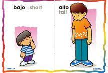 Conceptos básicos ED Infantil