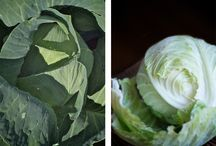 Cabbage Recipes / LEAP-friendly cabbage recipes