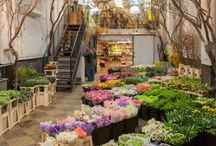 my flowers shop