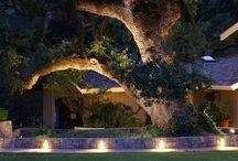 Garden lit