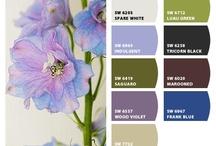 colour palate flowers