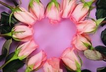 flowers i love / by Lorna Handa