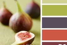 Colour Palettes / colour combos I love! / by Stephanie Wills