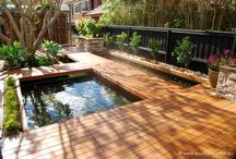 Aquaponic designs ( backyard )