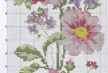 Ponto Cruz - Flores