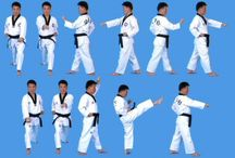 Tae kwon do - ITF and WTF / by Carey Dueweke