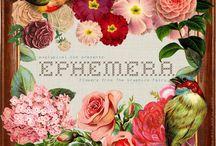 Ephemera / by Helena Arneson