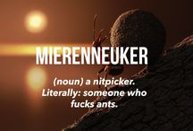 Funny Dutch words