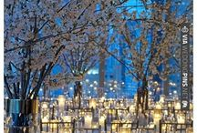 Winter Wedding / Visions of snowflakes and sparkling lights bounce through our heads. What a better time to get married :)  Featuring gowns available at Charlotte's Weddings & More and all the winter wedding inspiration you need for a beautifully chilly day!