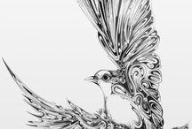 buty bird