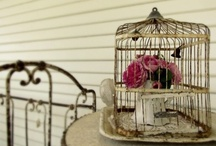 I like shabby Bird cages / Yeah I know, but they just look nice.