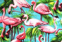 Into the wild / Editoriales estilo tropical