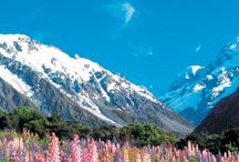 NZ Alpine Explorer / See what makes the South Island so special! Checkout our fun little itinerary that takes you to Glaciers, The Wild West Coast and Queenstown! To read more visit http://www.thriftytours.co.nz/alpine-explorer