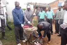 World Environment Day - June 2014, Kitale / Kitale