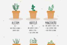 Coisas para Cultivar