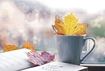 Fall / by Emma Sundh