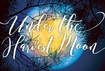 Under the Harvest Moon / Join us for an evening to benefit the Worcester County Horticultural Society and Tower Hill Botanic Garden, on September 17, 2016. Mingle amidst internationally-acclaimed artist Patrick Dougherty's striking Stickwork installation and enjoy a rustically elegant evening of signature cocktails, seasonal farm-to-table dinner, live music, and auction…all under September's spectacular Harvest Moon!