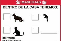 Tag Perros Perdidos / Sin fines de lucro, reportar y difundir animales extraviados. Tu ayuda es importante.