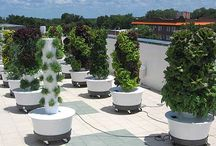 rooftop agriculture products