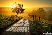 Sommer - Sprüche & Bilder