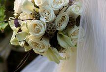 Wedding/Events / by Taylor Yocum