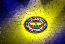 Fenerbahçe / spor