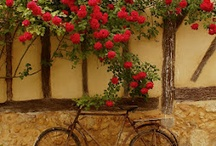 My Gascony, SW France / I live in this beautiful part of France, and have 2  Vacation Rentals: The Lake Cottage and the French Farmhouse both accomodate 1-6 guests ... enjoy nature, traditional medieval villages, beach's, mountains ... find out more here: http://LaTourGites.weebly.com / by Jodi A